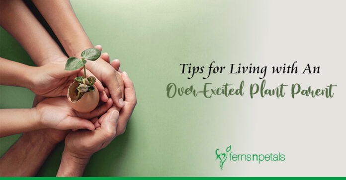 Tips for living with an over-excited plant parent